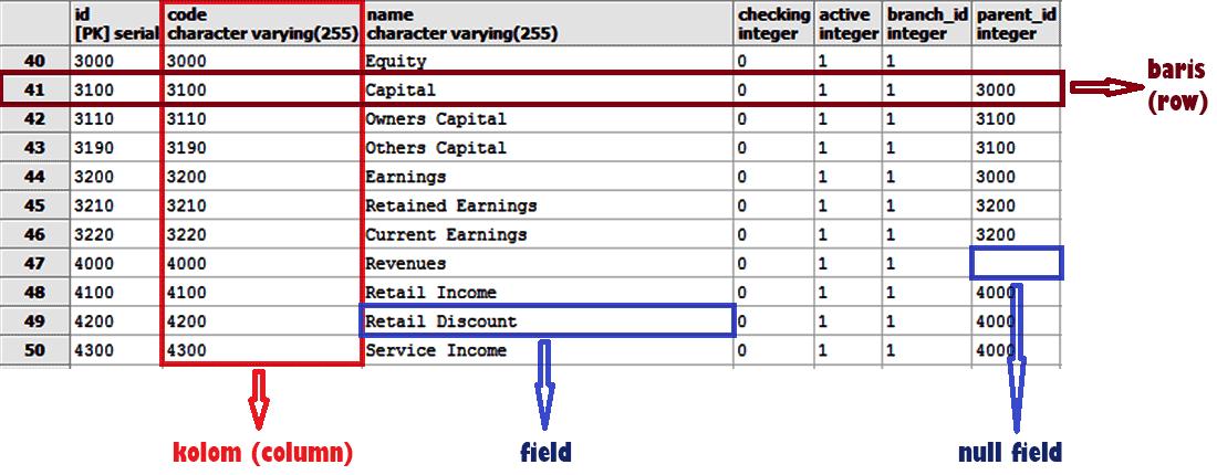 Struktur database relasional